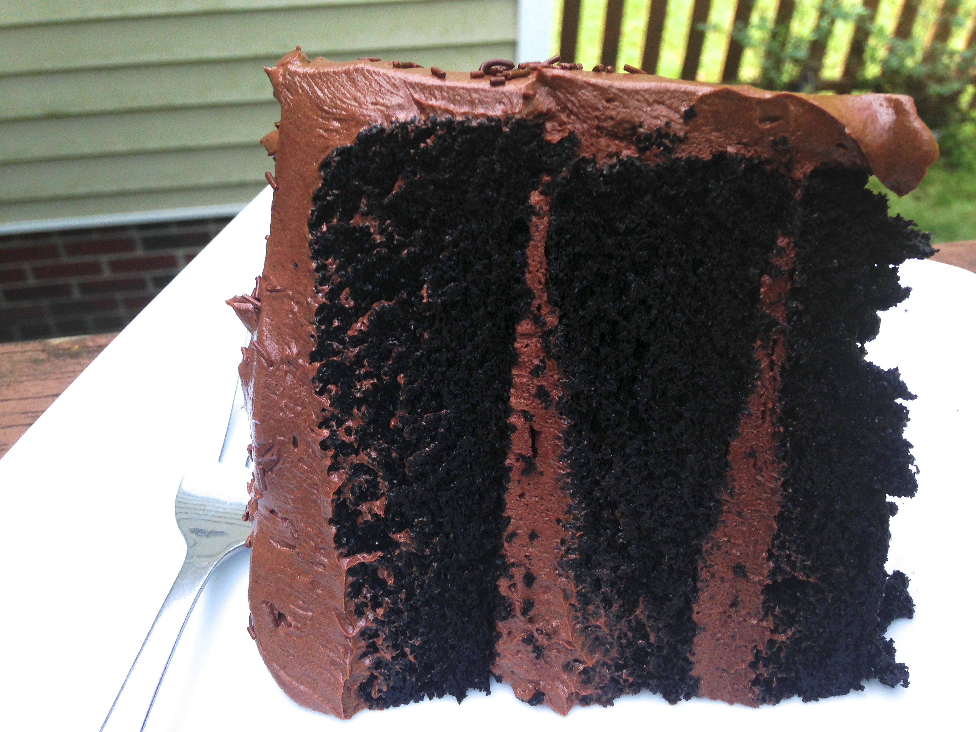 The Best Chocolate Cake You'll Ever Make- I promise!
