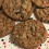 Oatmeal Chocolate Chunk ButterScotch Cookies